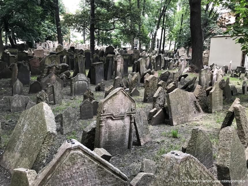 cmentarz żydowski w Pradze