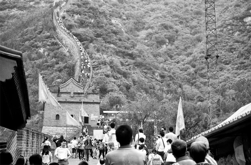Wilki Mur Chiński Badaling