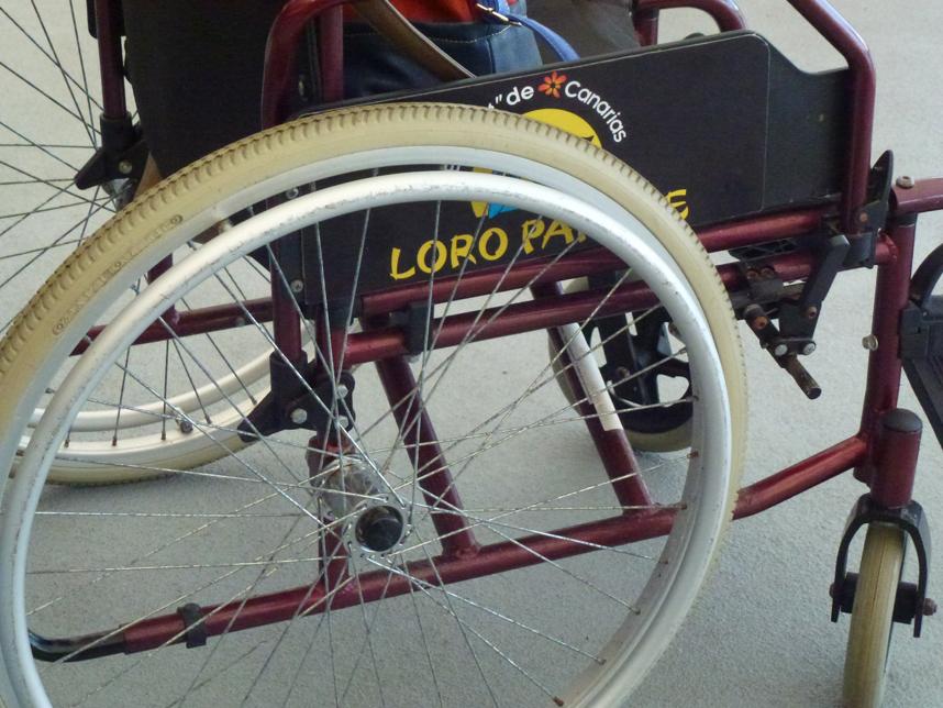 wózek inwalidzki Loro Park