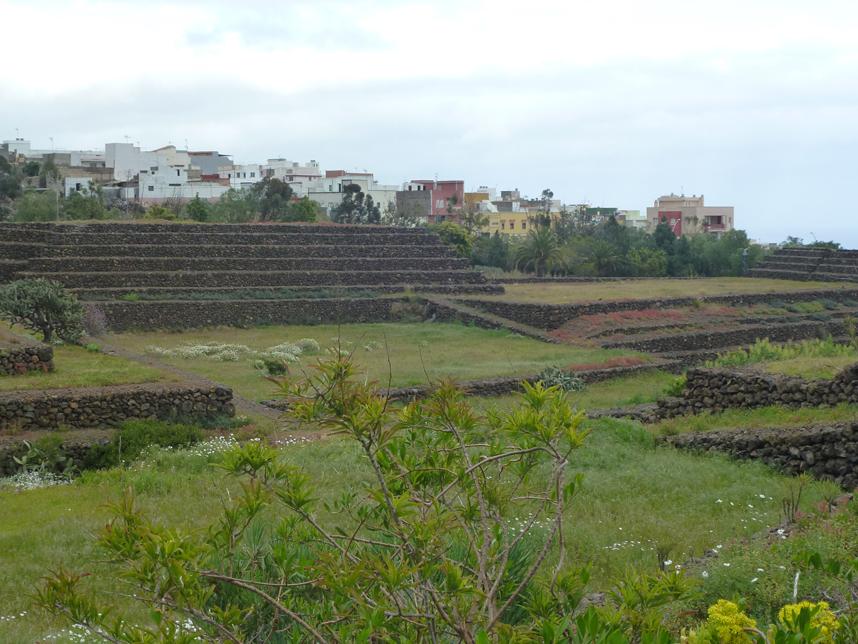 panorama Piramides de Guimar