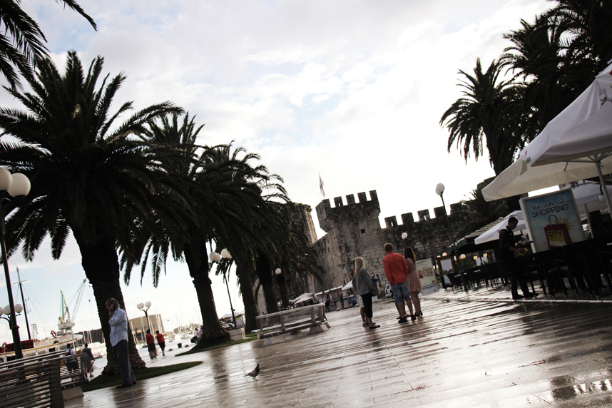 palmy Trogir