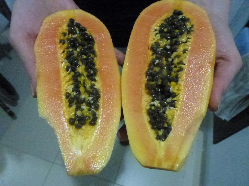 papaja Teneryfa