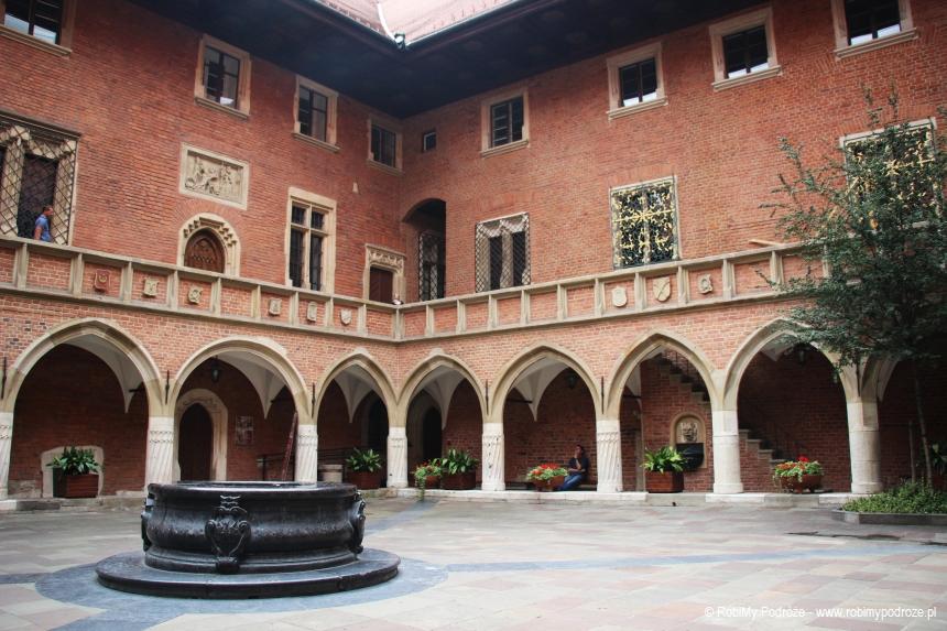 ciekawe miejsca Krakowa - Collegium Maius