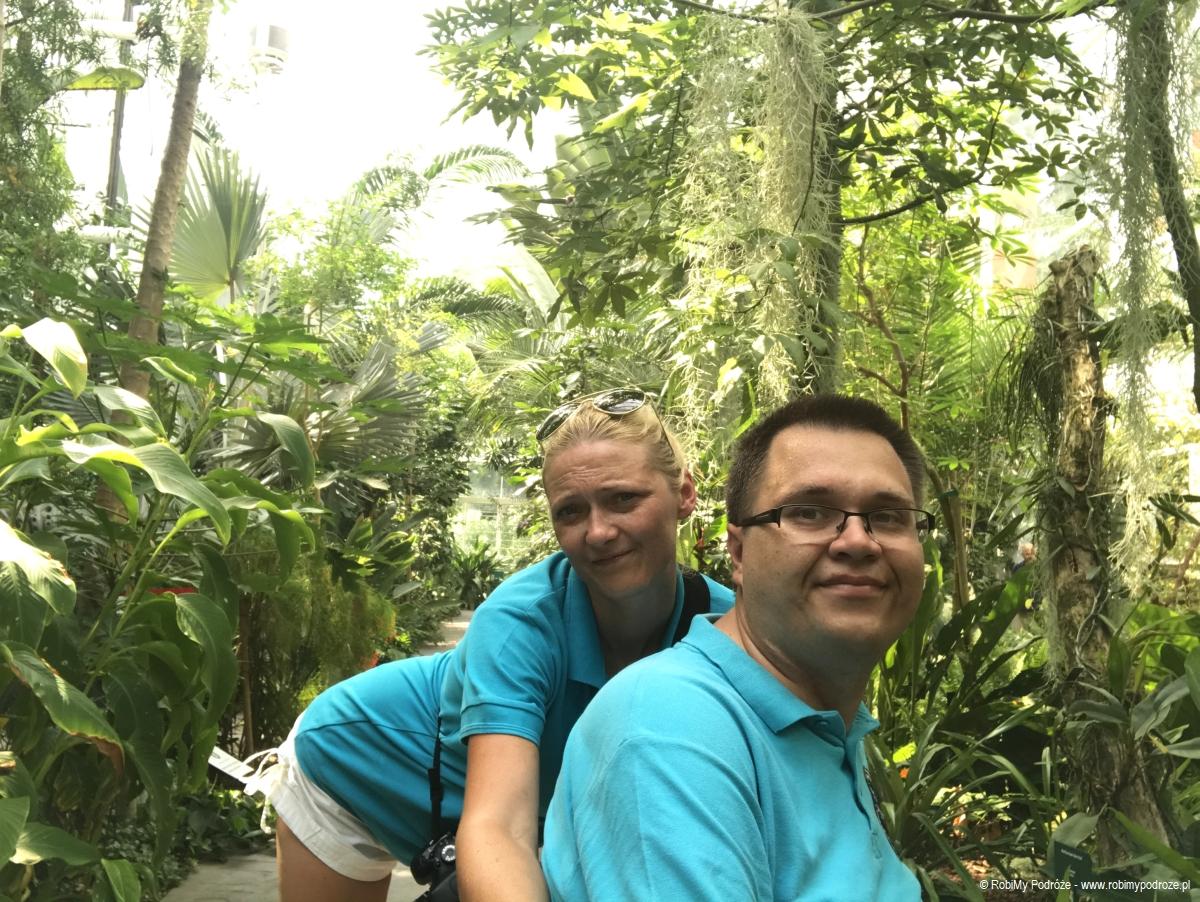 Ogród Botaniczny warto zobaczyć wPadwie