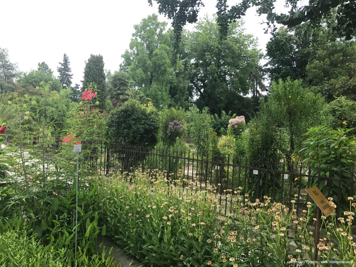ogród botaniczny Orto Botanico di Padova