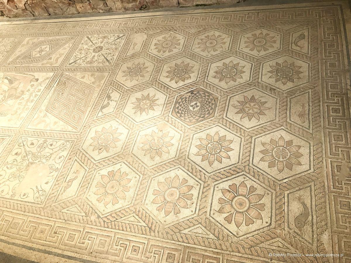 mozaika wPuli