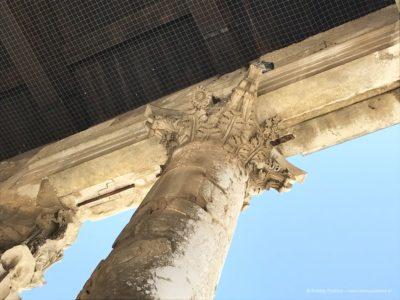 świątynia Augusta detale