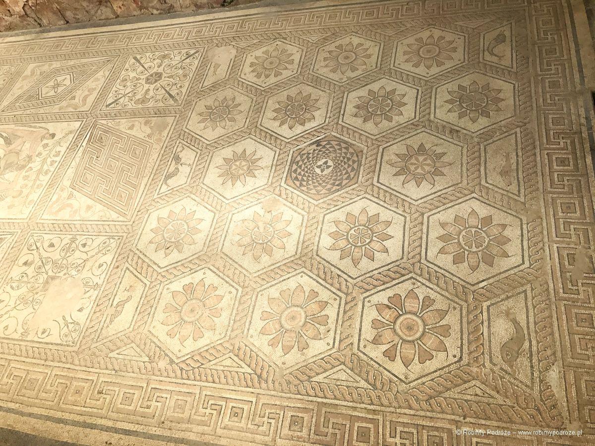 Przewodnik poPuli - mozaika