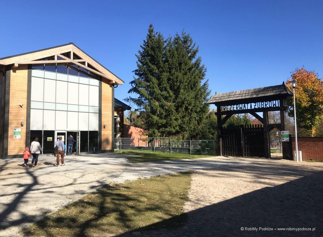 muzeum żubra na Podlasiu