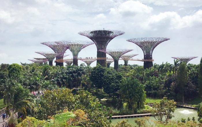 Podróż do Singapuru