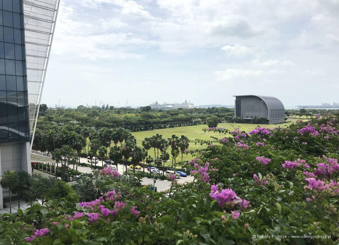 Singapur - widok nazatokę