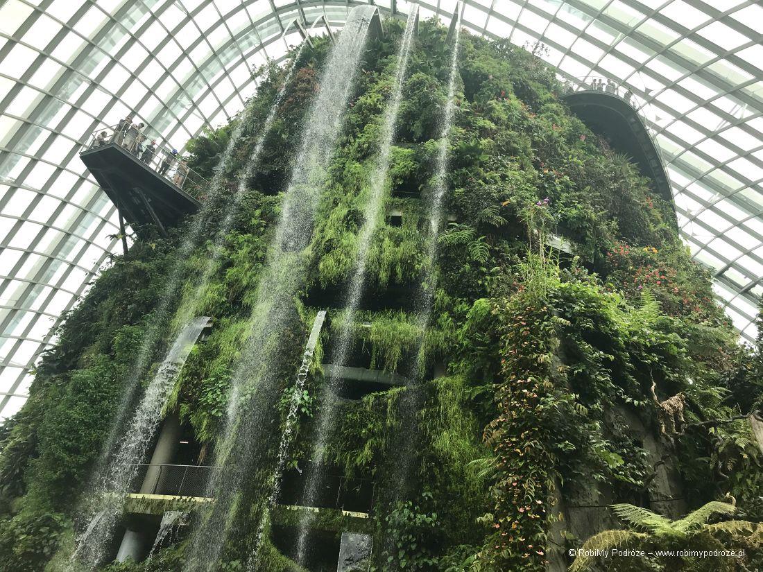 wodospad wCloud Forest