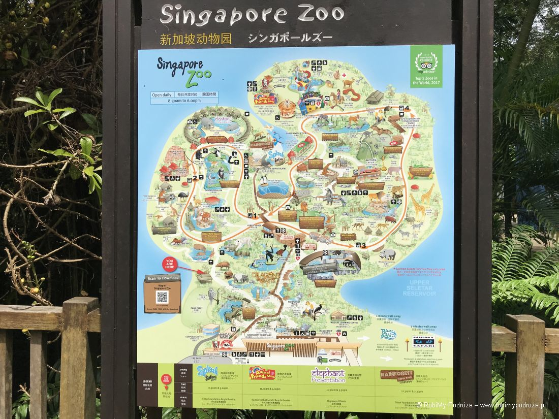 mapa zoo wSingapurze