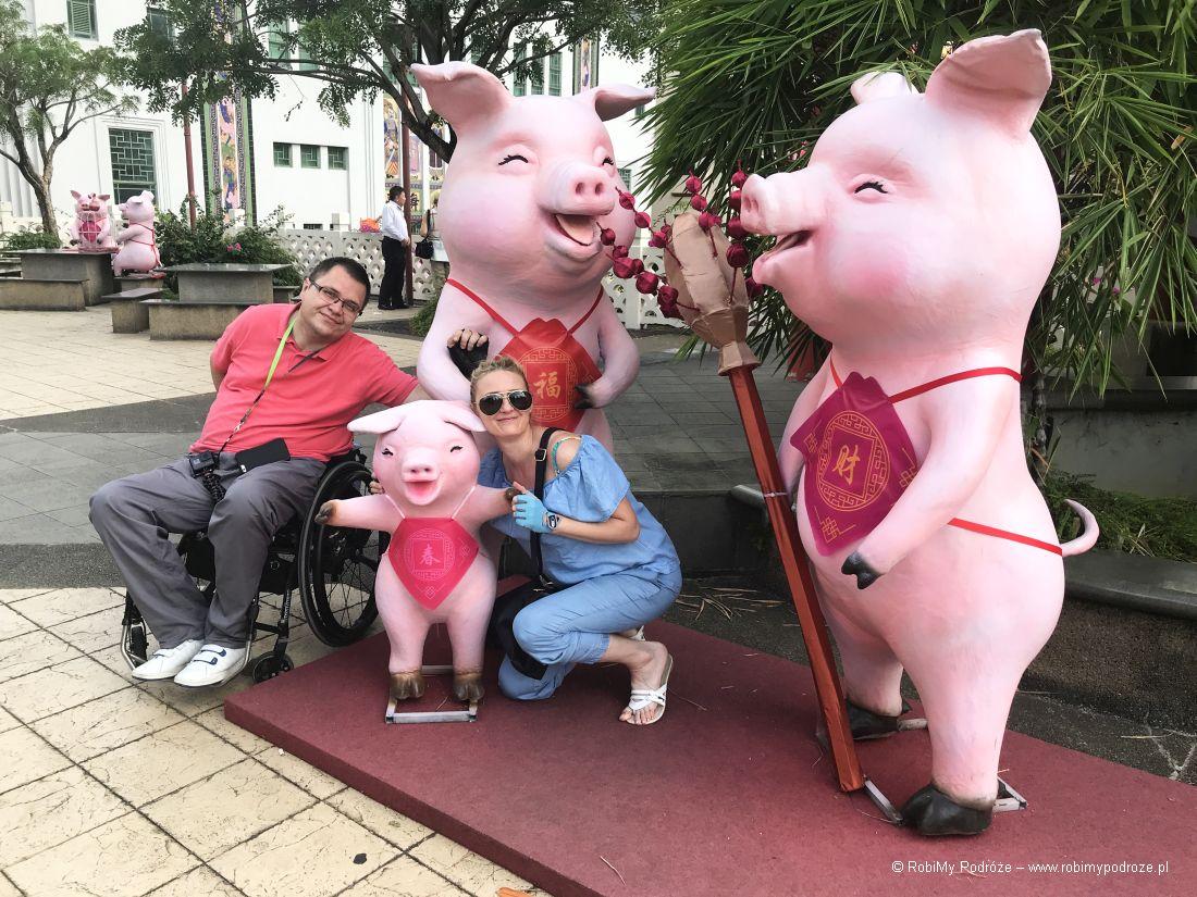 swinie wChinatown
