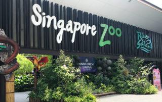 zoo wSingapurze