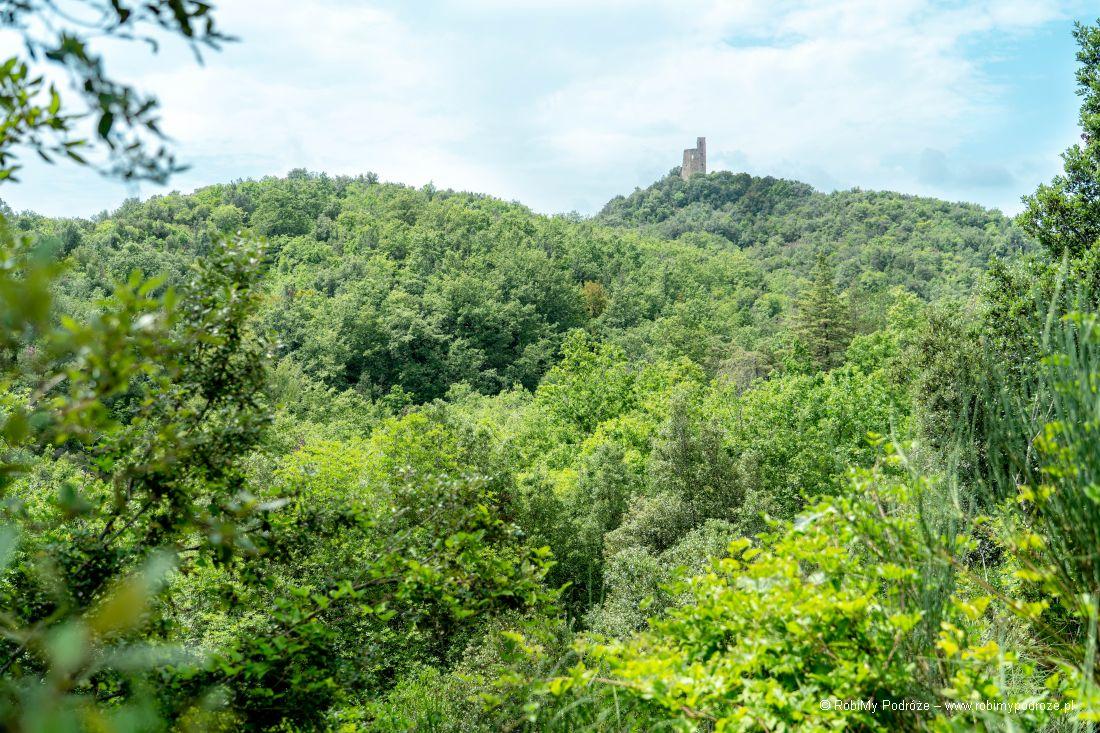 ruiny zamku Castello di Crevole wToskanii