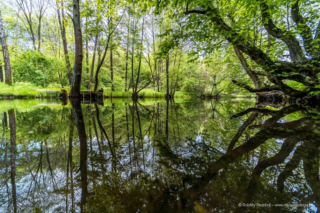 Łyna wRusi koło Olsztyna - Ruś – Szwajcaria naWarmii