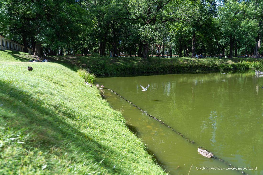ogród angielski wPałacu Branickich