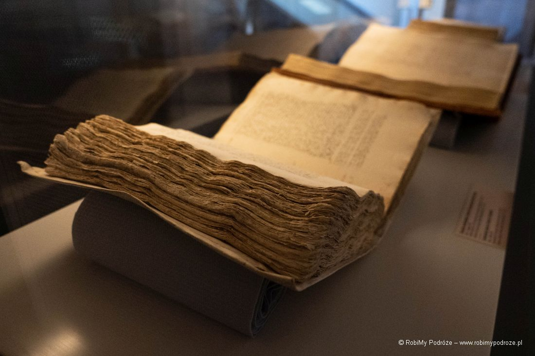 zapiski Leonarda da Vinci