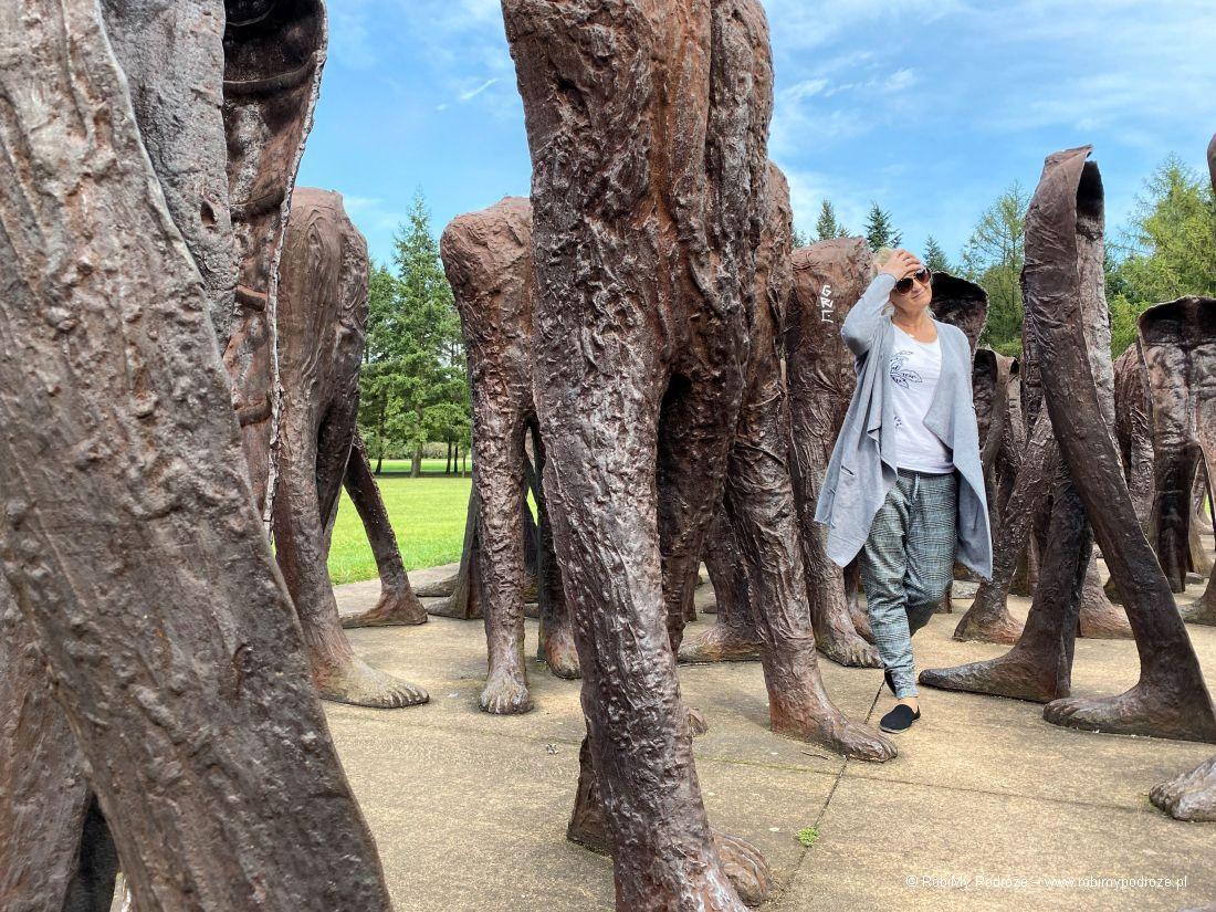 rzeźba wcytadeli