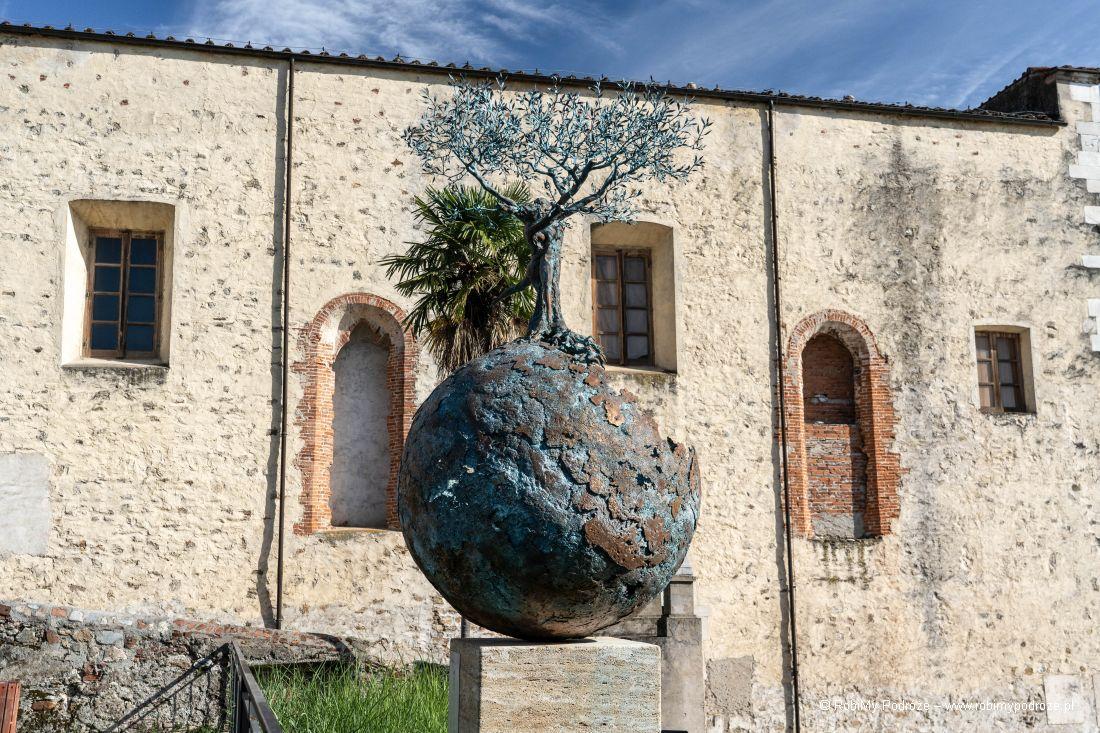 drzewo nakuli ziemskiej wpietrasancie