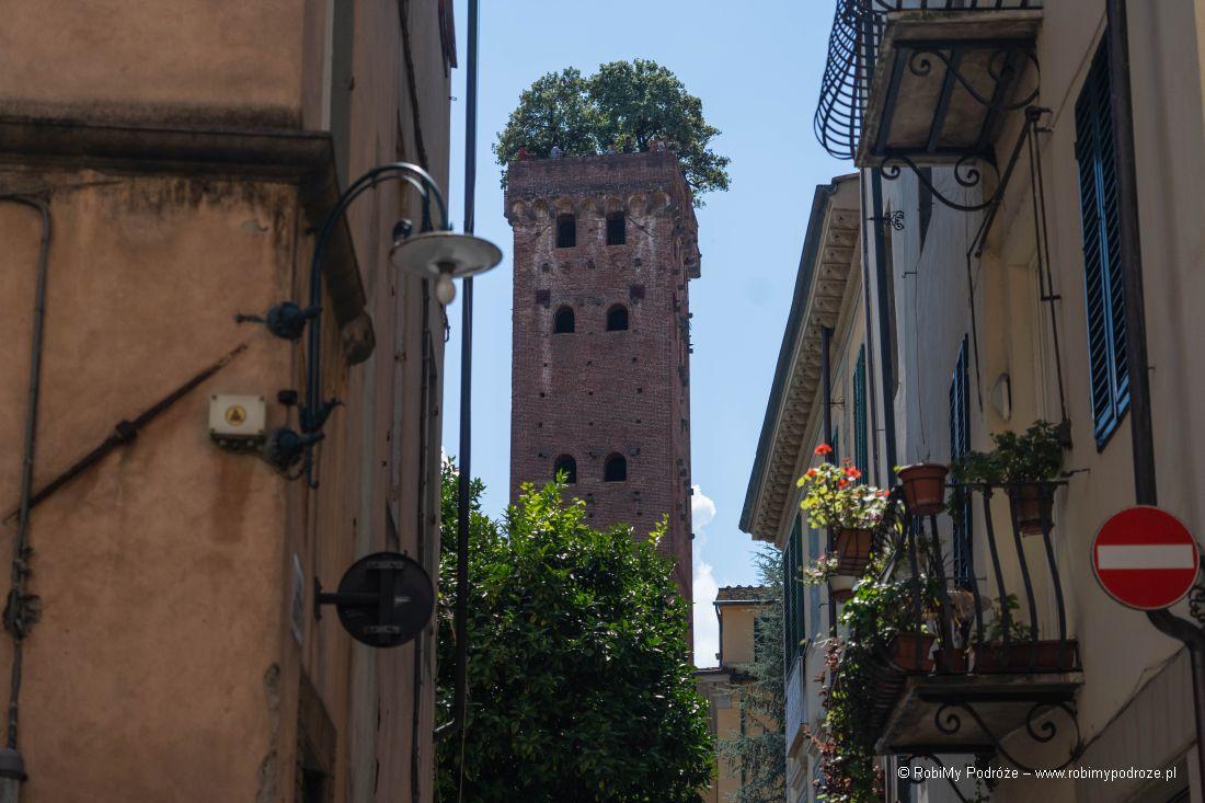 Torre Guinigi trzeba zobaczyć wLukce