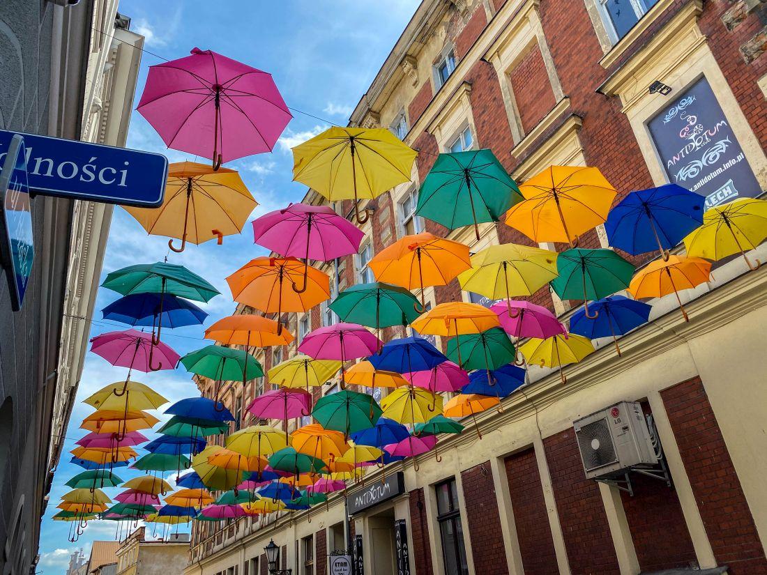 parasolki wmiejskiej przestrzeni Leszna
