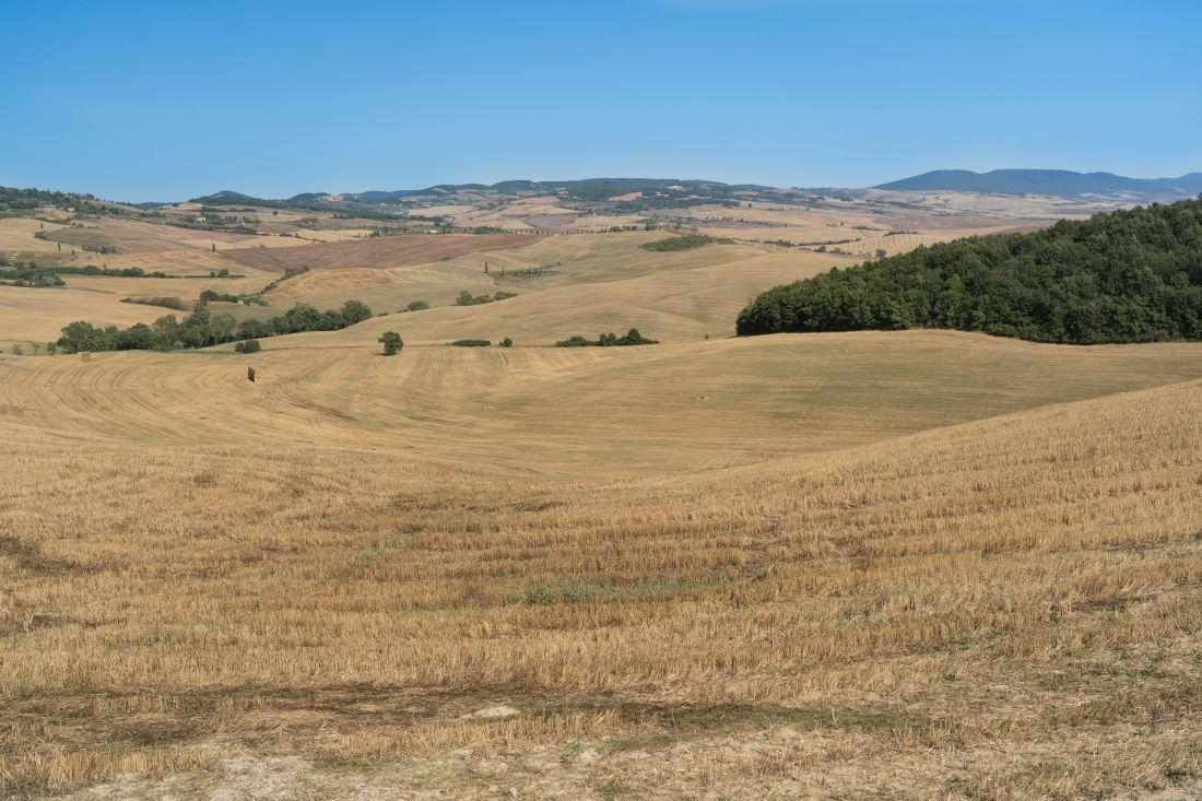 Panorama doliny Val d'Orcia wToskanii