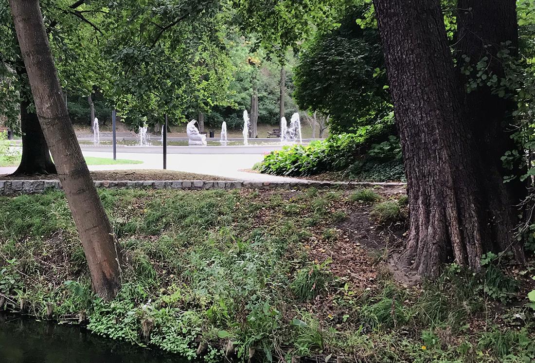 fontanna rybka