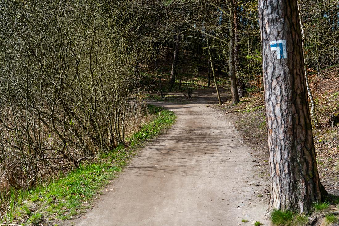 Najlepsza ścieżka spacerowa wOlsztynie