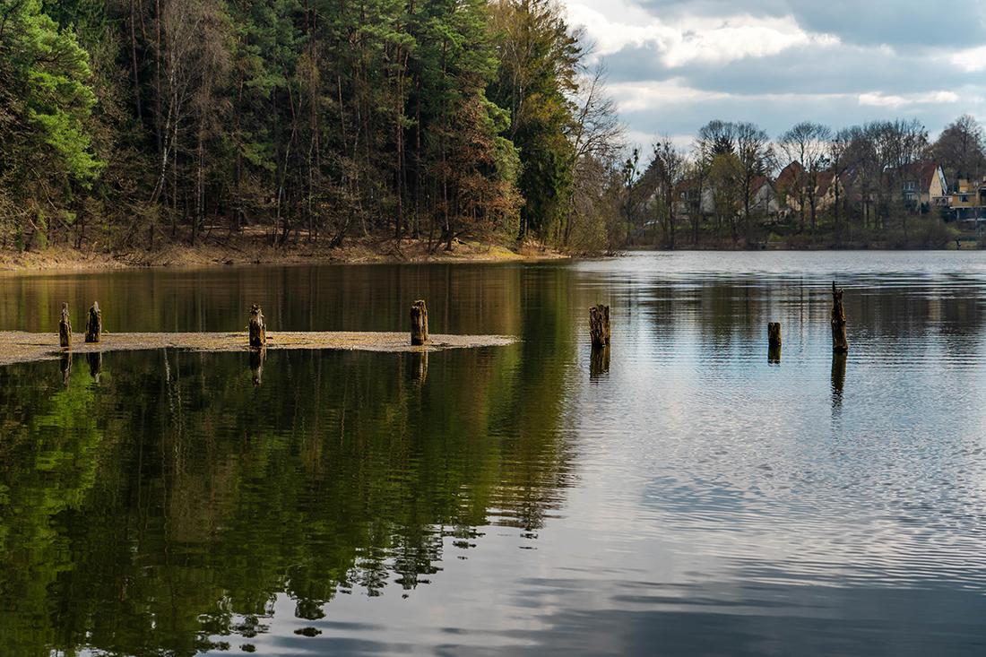 jezioro Długie iLas Miejski