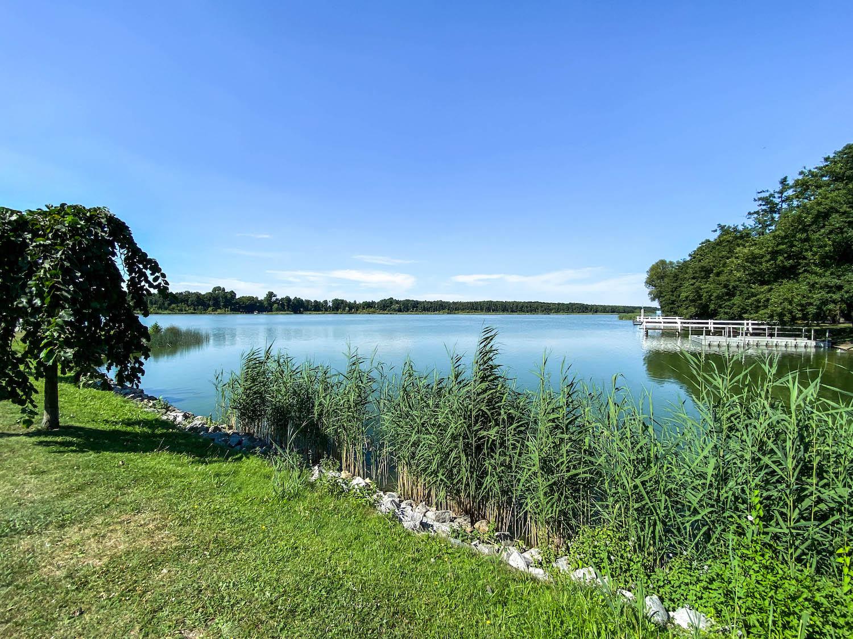 jezioro wolsztyńskie